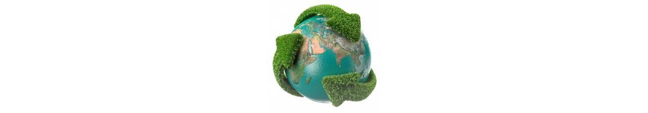 Misión y Medio Ambiente para Ecocart Spa Italia